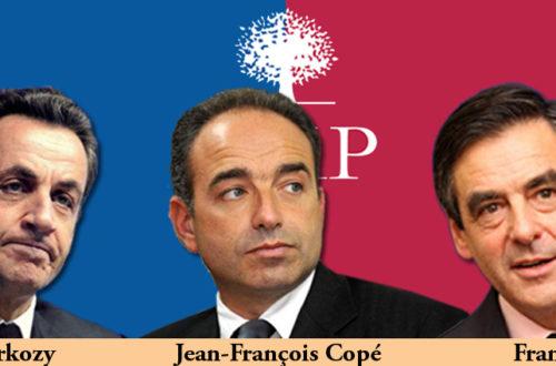 Article : Poulailler de l'UMP : les coqs maudits de Sarkozy croisent les ergots.