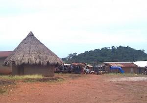Le village de Bossou en Guinée forestière. Crédit photo : Solo