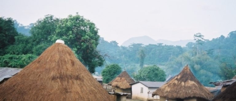 Article : Bossou, un exemple d'écolo village à l'ancienne