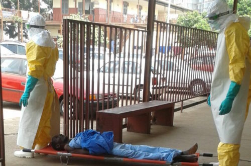 Article : Le yoyo d'ebola : une histoire dont les héros sont connus
